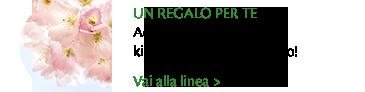 Profumi - Regalo